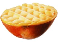 D9 Mangue givrée